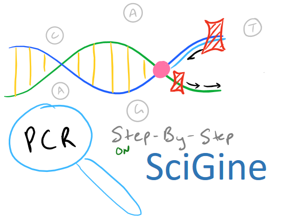 PCR Method Guide on SciGine